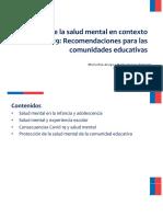 Protección-de-la-salud-mental-en-pandemia-recomendaciones-para-las-comunidades-educativas.pdf