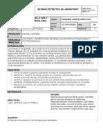 Labortorio Semilla_Catagña_M.doc