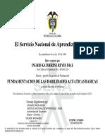 certificado de fundamentacion en habilidades acuaticas basicas