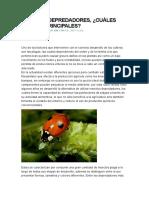 INSECTOS DEPREDADORES.docx