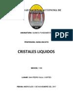 CRISTALES LIQUIDOS