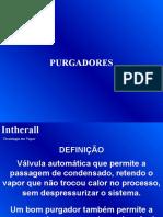 Purgadores.pptx