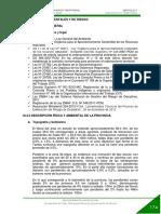 03c_AMBIENTAL Y DE RIESGOS PAT.pdf