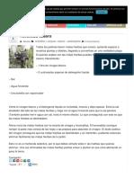 herbicida_casero_los_remedios_de_la_abuela