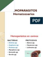 HEMOPARASITOS.pdf