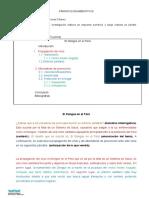 PARRAFO DE CONCLUSION