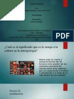 trabajo individual antropologia exposicion