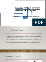 BENEFICIOS DE ALGUNAS TECNICAS AGRICOLAS SENCILLAS PARA LA.pptx
