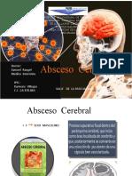 absceso  cerebral  karmary  villegas