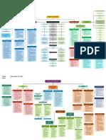 chico_physioconceptmap.pdf