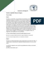 2 parcial de Anatomìa y Fisiologìa III