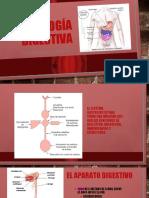 FISIOLOGÍA DIGESTIVA 5-7.pptx
