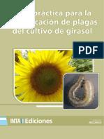 guia_practica_para_la_identificacion_de_plagas_del_cultivo_de_girasol