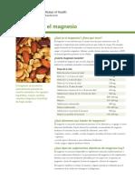 investigacion  cloruro de magnesio
