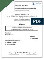 Diagnostic financier d'une entreprise.pdf