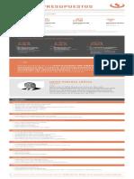 CE Costos y Presupuestos HOJA CURSO VIRTUAL v2 (1).pdf