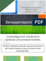 2. Clase de Sensopercepcion
