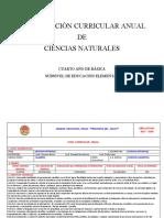 PCA CCNN 4 EGB