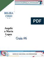 GUIA 06 COMPLETA