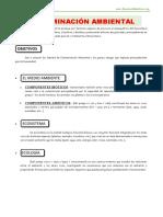 Contaminacion-Ambiental-para-Tercero-de-Secundaria.docx