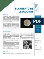 136717022-Informe-de-Aislamiento-de-Levaduras-Alimentos.pdf