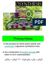 Botany 102 ( Lab ) - Photosynthesis