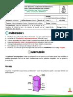 1P GUA 6 POLIEDROS IRREGULARES - PRISMAS (1).pdf