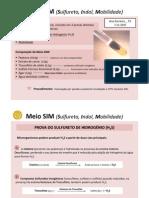 SIM_H2S_e_Mobilidade