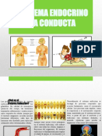 elsistemaendocrinoylaconducta-140620193714-phpapp01.pptx