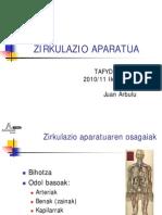 ZIRKULAZIO APARATUA
