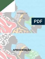 RELAÇÕES ÉTNICO-RACIAIS NO BRASIL