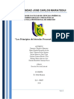 TEMA 2 principios del derecho procesal Laboral