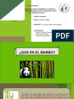 EXPOSICION DEL BAMBU