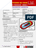 SEMANA 3 - CÉLULAS PROCARIOTAS Y EUCARIOTAS [2do CIENCIA Y TECNOLOGÍA]