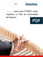 Guia práctica para PYMES