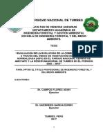 TESIS - CAMPOS Y GUERRERO