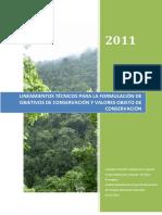 Lineamientos_VOC_.pdf