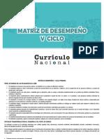 matriz de desempeño v ciclo primaria