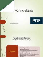 8-pomi.pdf