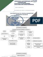 CAPÍTULO 11 ACTIVIDADES DE COLCHONETA .pdf