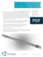 INTERWELL Anchored Production Straddle Product sheet