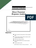 Prob03 n4w Direct Transient