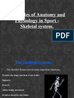 Principles of Anatomy and Physiology in Sport