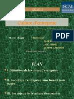 Culture d Entreprise Déf