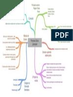 Mapa conceitual processo Processo Sócio-Libertador