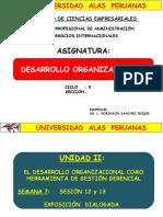 286005549-DESARROLLO-ORGANIZACIONAL