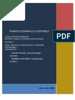 TRABAJO DESARROLLO SOSTENIBLE OBJETIVO 12.docx