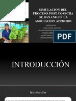 Presentacion Bananos.pptx
