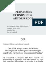 Trabalho escolar - OEA
