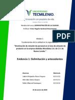 Evidencia 1 - Delimitación y Antecedentes  (1)
